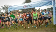 Cross Ward 2018